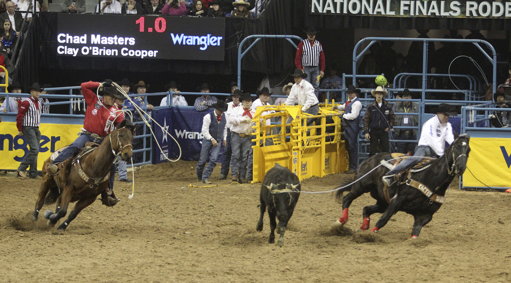 Nfr 2019 dates in Melbourne