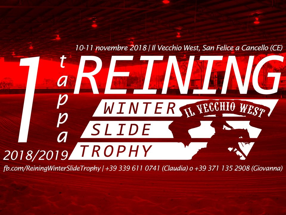 reining winter trophy